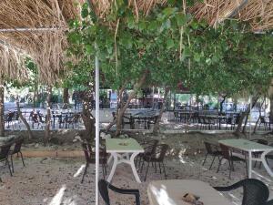 cafe-bar-taverna-o-sotiris-2020-1
